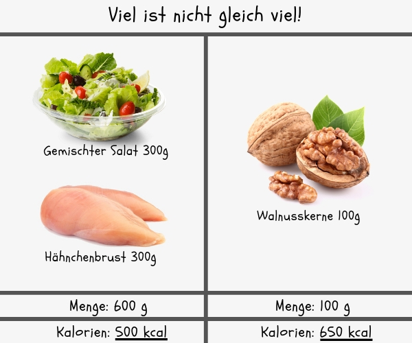 Wie nehme ich zu - Kaloriendichte von 2 unterschiedlichen Mahlzeiten